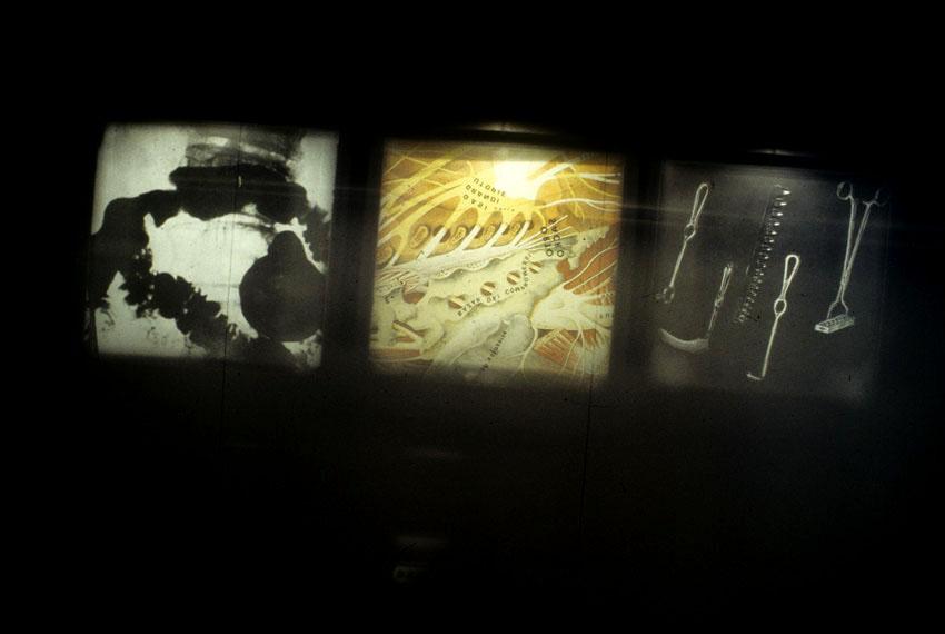 pellegrini-anatomia-del-desiderio-3